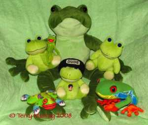 28684-frogs
